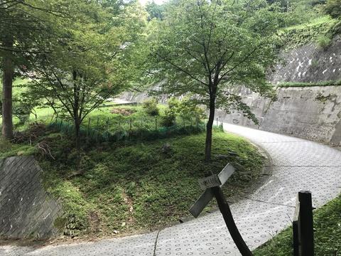 高山不動尊の前の道路