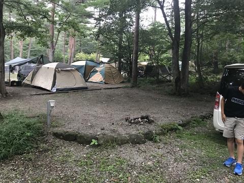 キャンプラビット園内7